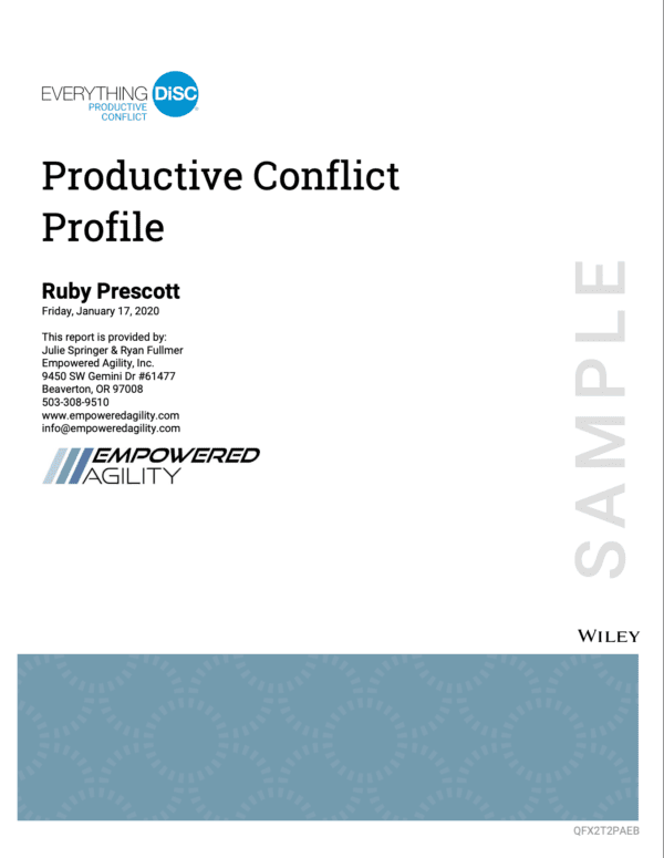 Everything Disc Productive Conflict profile sample cover of report