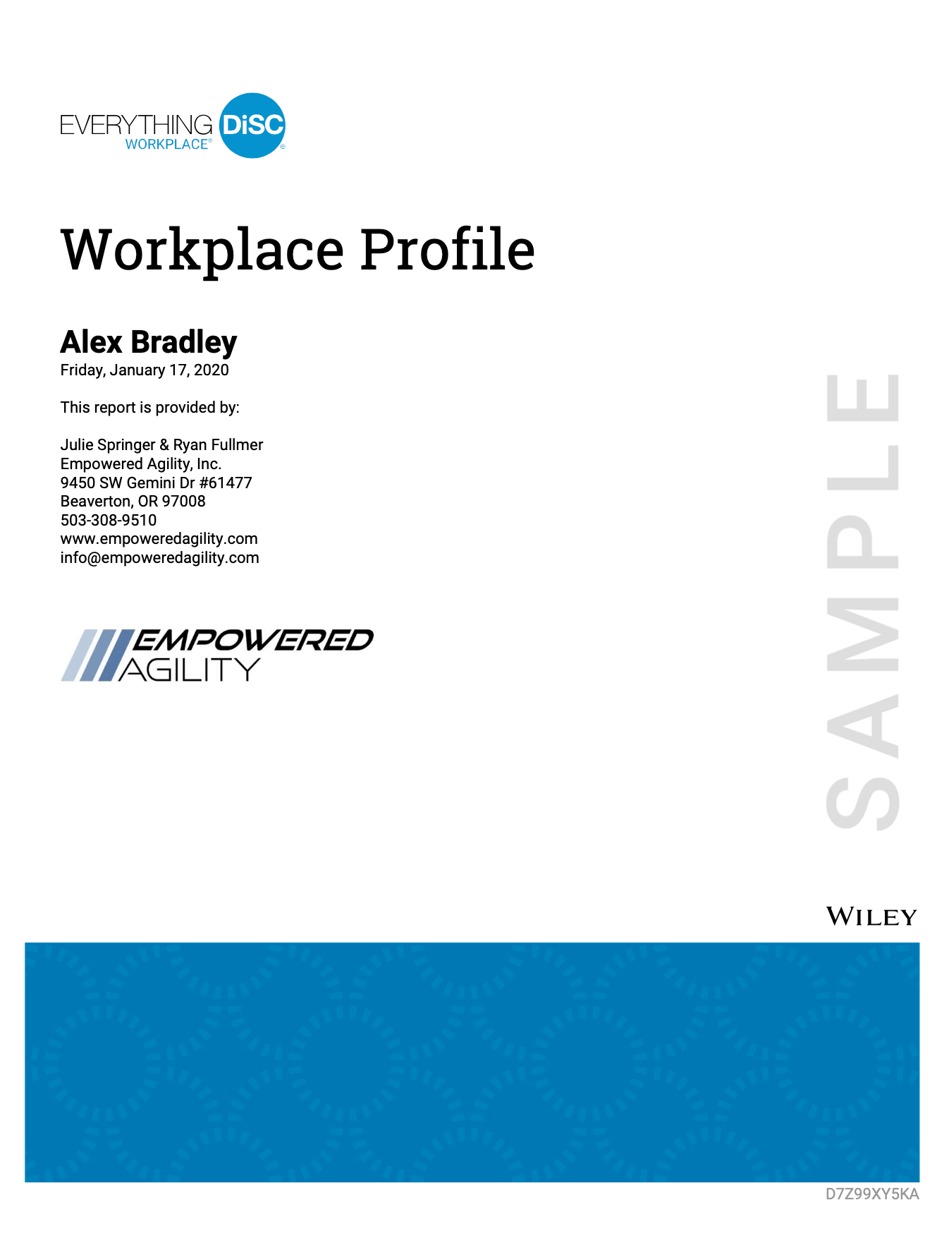 Everything Disc Workplace profile sample cover of report